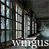 animusmods: (wingus)