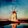 raidingwindmills: (windmills)