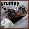 peppervl: (grumpy)