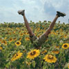 rhianweed: (flowers legs)