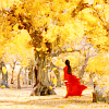 bennet_7: (Lady in Red stands in Yellow)