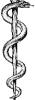 aquenigmatic: (rod of asclepius)