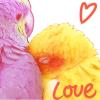 lovenest: (nesty)