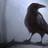 featherdream: (bird; perched)