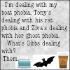 waldo: (ncis: dealing with phobias)