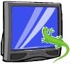 jae: (televisiongecko)