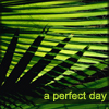 conchy_monkey: (a perfect day)