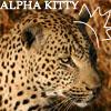 aninreh: (alpha kitty)