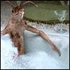 bring_a_sponge: (worm bath)