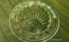 trinaward1: (crop circle)