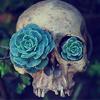 flashgordana: (flower, skull)