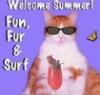 eertyecal: (Fun Cat)