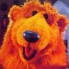 tehomet: (Bear necessities)