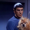 toft: spock and puppy (happy_spock/puppy)