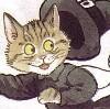 shadowycat: (catwitch)