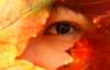 badman14: (fall)