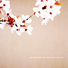 off_the_homerow: (cherry blossoms)