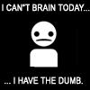 arielmn: (can't brain have the dumb)