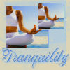 pervypixie: (Tranquility_by Aims)