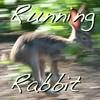 estel: (Running Rabbit, running rabbit)
