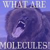 bearsanon: (molecules)