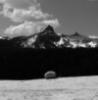 do_rocks_dream: Glaceral erratic, Pothole Dome, YNP CA (Default)