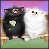 fortunca: (Коты влюблённые)