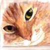 valiha: watercolor painting of my cat Lola (initials)
