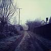 ohmyfurandwhiskers: (wintry roadway)