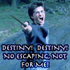 "afewsmallrepairs: Harry Potter: Harry brandishing his wand, text: ""destiny! destiny! no escaping, not for me!"" (destiny! destiny!)"