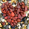 silverr: red pebbles arranged in a heart shape (_lovepebble)
