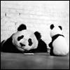 herdivineshadow: (panda toy)