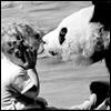herdivineshadow: (panda traumatising child)