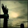 darkfyre_muse: (wings)