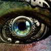 0jack: Detail of a human-like eye but the eyeball and socket are made of steampunk-style metal parts. (The all-seeing machine.)