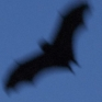 narrativian: fruitbat flying silhouetted against dusk sky (Bat-signal)