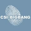 zeldaophelia: (CSI || CSI Big Bang)