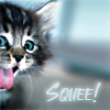em_kellesvig: Happy kitten with the word Squee! (KittenSquee)