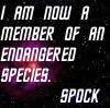 vulcanreforged: Text only: I am now a member of an endangered species. —Spock (pic#244873)