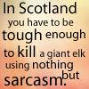 corusca: (Sarcasm)