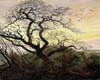 """hershele_ostropoler: David's """"Tree of Crows"""" (tree of crows)"""