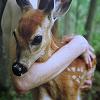 coldkissofreality: (Bambi)
