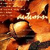 duskpeterson: (autumn acorn)