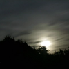 nightfall_notes: (pic#2464792)
