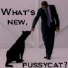 theodosia: (pussycat (by heuradys))