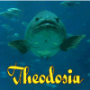 theodosia: (fishy)