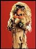 dancefloorlandmine: (Muppet)