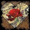 dancefloorlandmine: (ValentineCollage)