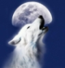 irisflowerz: wolfs moon (Default)