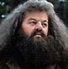 bethbethbeth: (HP Hagrid (bbb))